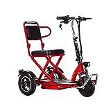 XCBY Elektroroller 3-Rad, Elektromobil für Senioren, Scooter E-Mobil, Seniorenfahrzeug, 350W ,20...