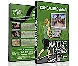 Natur Spaziergänge DVD - Tropische Vogel Safari - für Indoor Spaziergänge, Laufband and Jogging...
