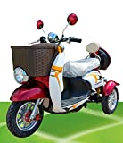 500W ElektroScooter Senioren ElektroMobil Mobility Vehicle Elektro Dreirad ZweiSitzer 'Sam 1'...