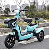 Green Energy Elektro 3-Rad-Scooter Elektro-Dreirad, Single Double Outdoor Leisure 3-Rad-Fahrrad,...