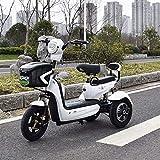 Elektrische dreirädrigen Roller Elektro-Dreirad, Single Double Außen 3-Rad Fahrrad, Geeignet für...